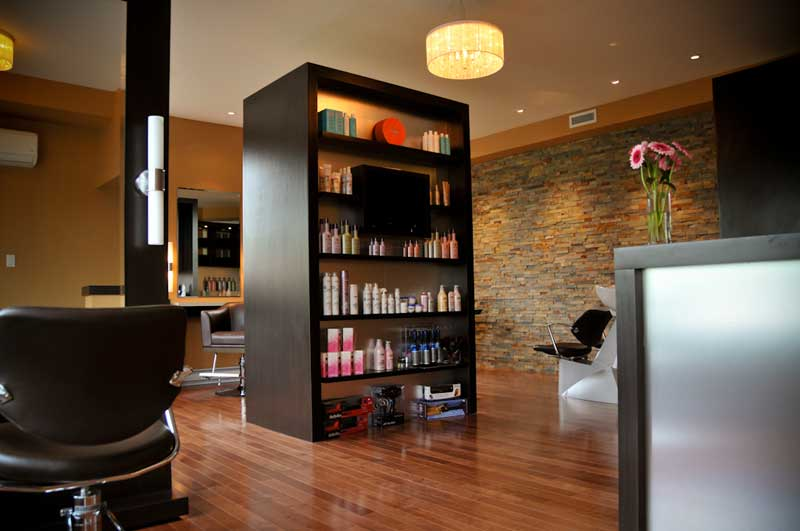 Lmh salon providing professional hair styling colouring for Loreal salon price list